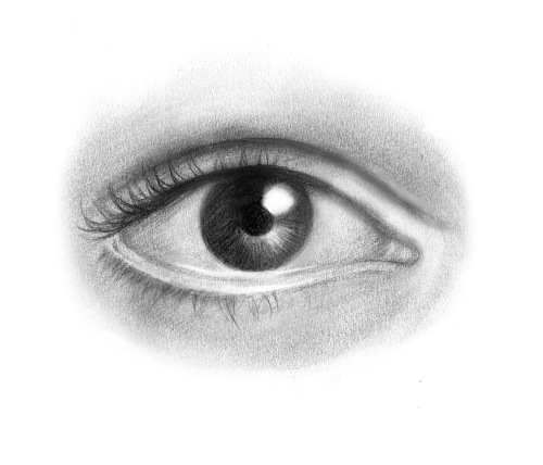 Drawing for Beginners Eye