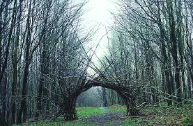 Trail-Art-Arch